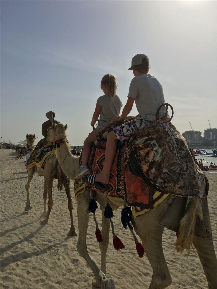 Camel safari at Dubai Beach.
