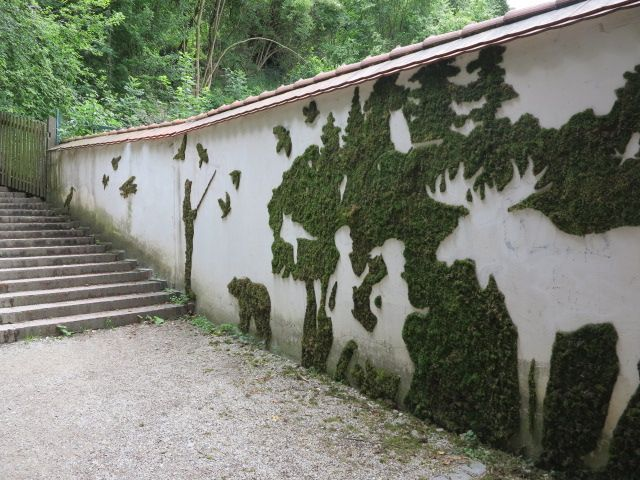 Example of moss painting, by Carly Schmitt