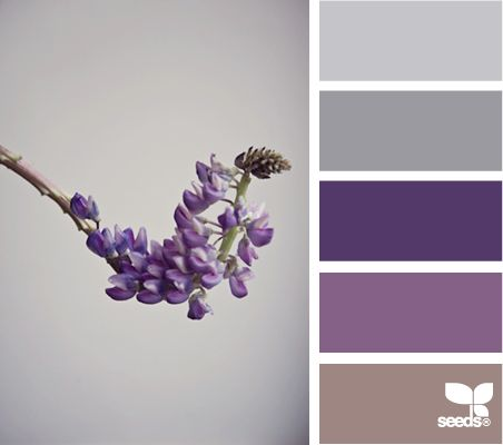 thistle tones from design seeds. I love these monocramatic hues of purple for little girls.