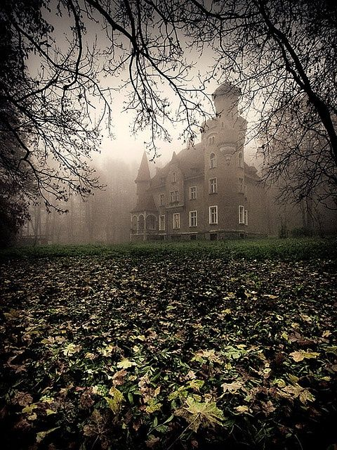 Mystical Castle, Lower Silesia, Poland   .   .   .   photo credit:  http://bluepueblo.tumblr.com/page/53