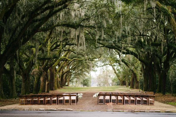 Legare Waring House Wedding From Juliet Elizabeth Photography: Best 25+ Wedding Under Trees Ideas On Pinterest