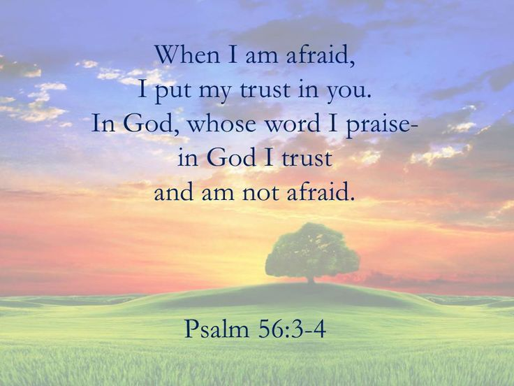 Image result for Psalm 56:3-4