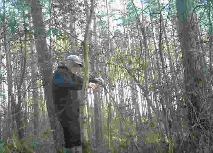 """Straż Leśna z Nadleśnictwa Strzelce Krajeńskie (RDLP w Szczecinie) wytoczyła """"nowoczesne"""" działa przeciwko kłusownikom."""