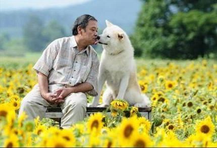 映画『星守る犬』 人間と犬の絆を通して人々との繋がりを描いた映画。主演の西田敏行が無償の愛を飼い犬に注ぐ姿は自然で感動的だ!