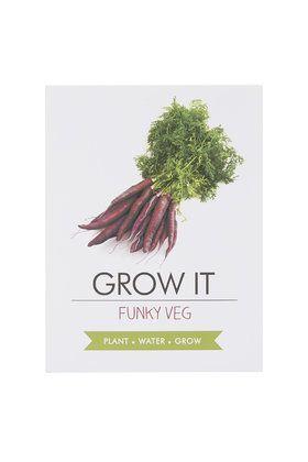 Grow Your Own Funky Veg Kit