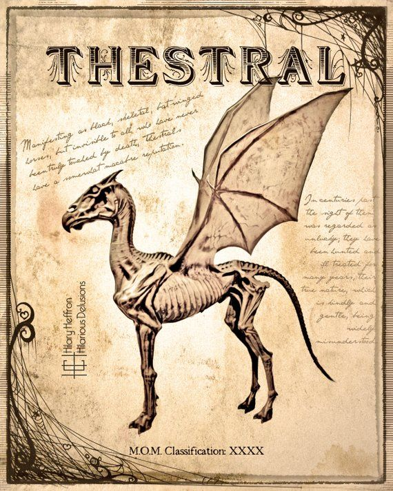 Thestral Fantastic Beasts Book Page Digital Painting Print Harry Potter Creatures Harry Potter Pictures Harry Potter Poster