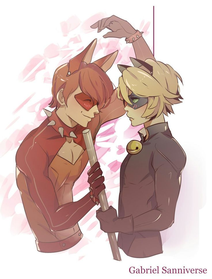 i'm guessing that that is rena rouge as a boy of if trixx got a boy with chat noir