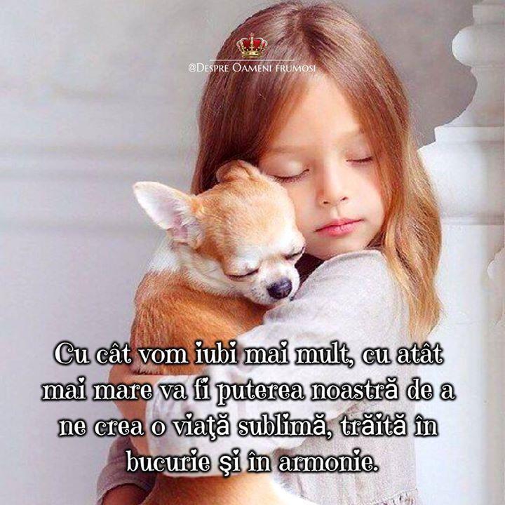Iubirea este cea mai mare putere a noastră aflată într-o armonie desăvârşită cu legea atracţiei.   Cu cât iubim mai mult cu atât mai mare este puterea noastră.   Cu cât simţim o iubire mai altruistă şi mai necondiţionată cu atât mai uluitoare devine puterea noastră.  Legea atracţiei mai este numită şi legea iubirii întrucât reprezintă ea însăşi un dar al iubirii pentru umanitate.   Ea este legea care ne permite să ne schimbăm viaţa aşa cum dorim.  Cu cât vom iubi mai mult cu atât mai mare va…