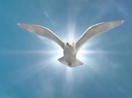 O HOLY SPIRIT, SOUL OF MY SOUL,   I ADORE YOU.  ENLIGHTEN, GUIDE, STRENGTHEN, AND CONSOLE ME.  TELL ME WHAT I OUGHT TO DO AND COMMAND ME TO DO IT.  I PROMISE TO BE SUBMISSIVE IN ALL THAT YOU ASK OF ME AND TO ACCEPT ALL THAT  YOU PERMIT TO HAPPEN TO ME, ONLY TELL ME WHAT IS YOUR WILL.