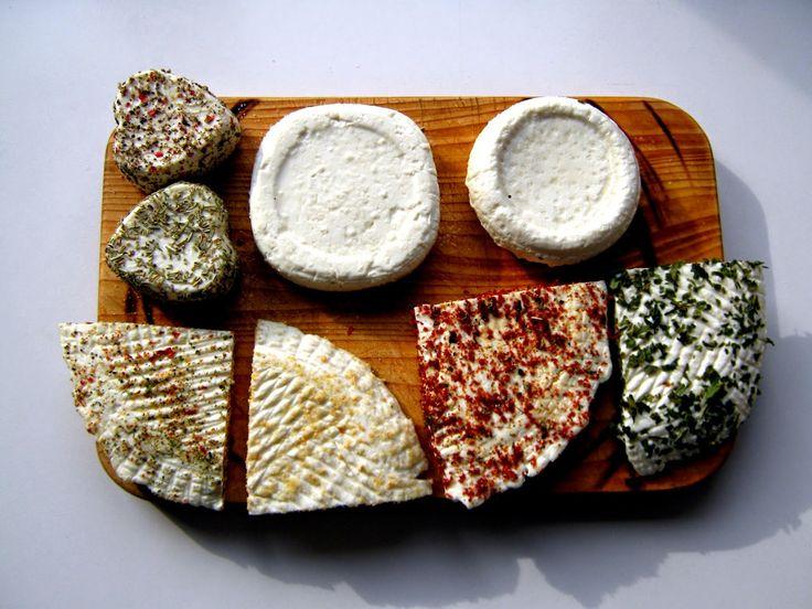 Co si dneska dám?: Sýraření - Farmářský sýr