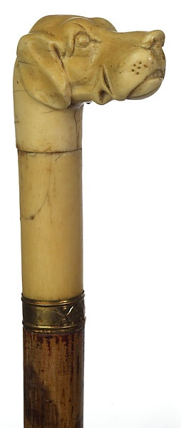 FINE IVORY HOUND HEAD CANE - Cowan's Auctions
