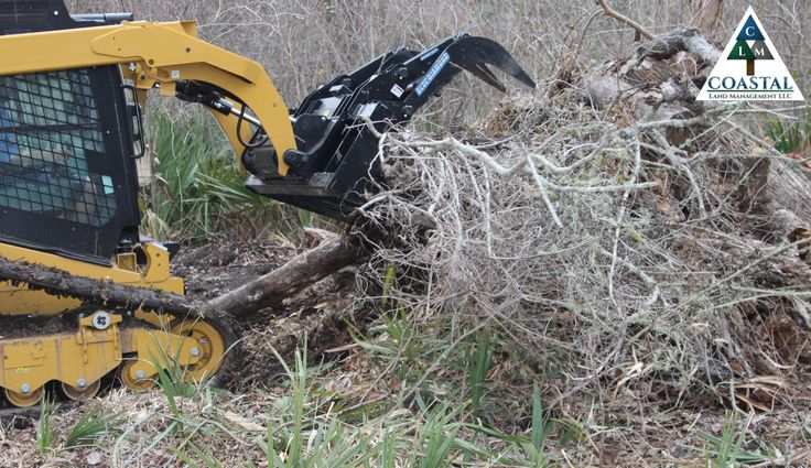 Brush cleanup services houston tx land clearing