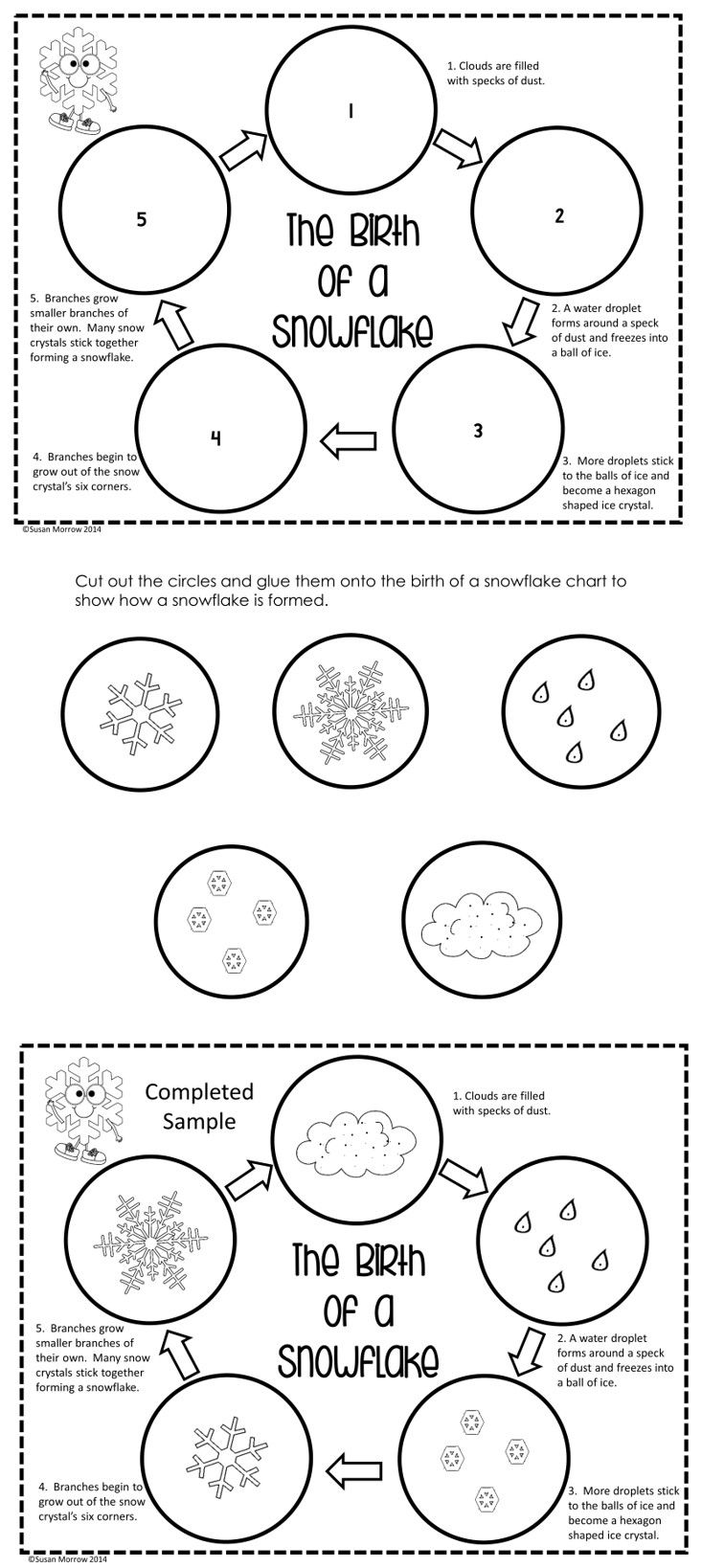 This life cycle of a snowflake sequencing cut and paste is just one of the many activities in this Snowflake Bentley Unit integrating science into literature. It's great for students in grade 2-5.  Plenty of differentiated activities.