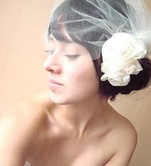 ivory tulle birdcage veil hair comb