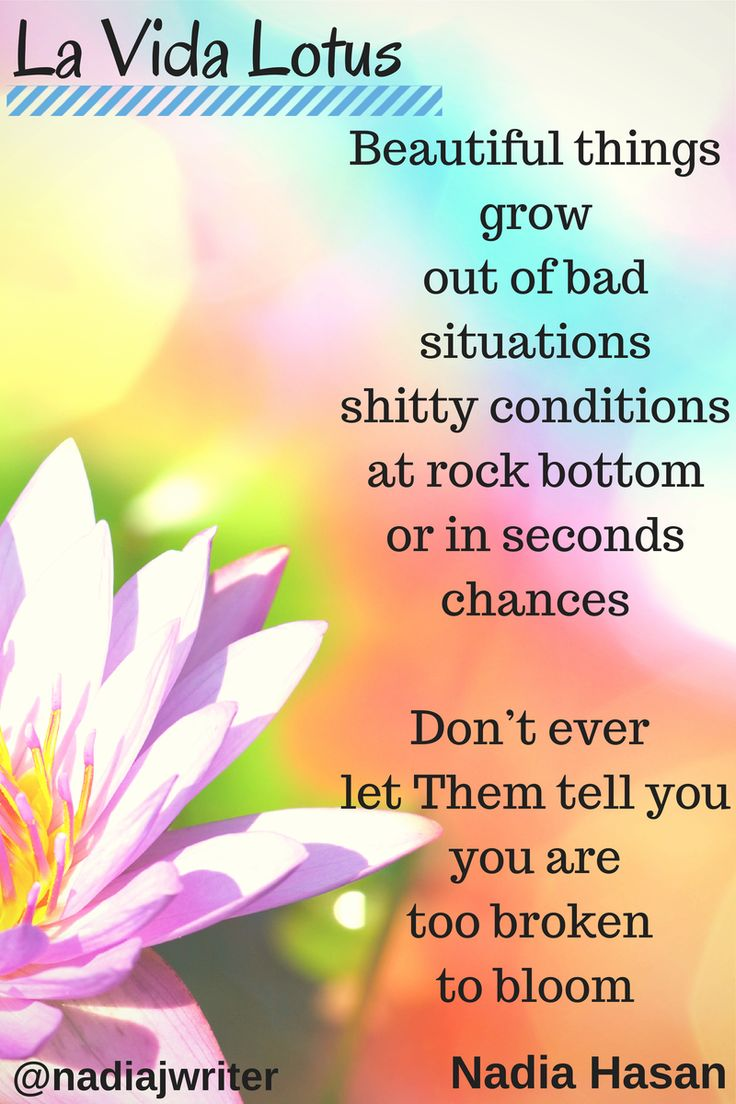 Lotus flower poems quotes lotus flower poems lotus flower poems quotes mightylinksfo