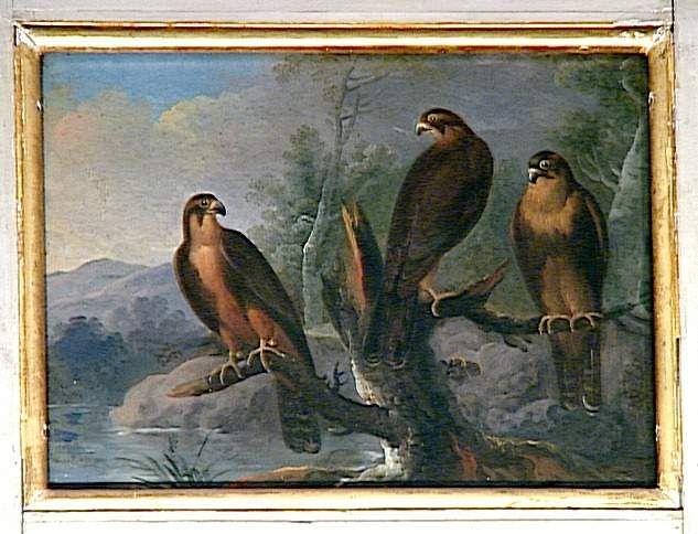 attribué à Nicasius Bernaerts Trois petits oiseaux de proie.  Photo (C) RMN-Grand Palais (Château de Fontainebleau) / Gérard Blot