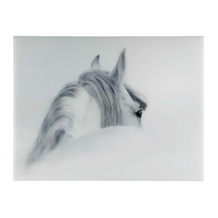 Tableau cheval en plexi® 160 x 120 cm OLYMPE