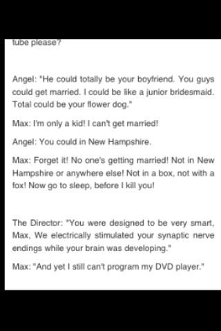 Some funny moments of maximum ride!