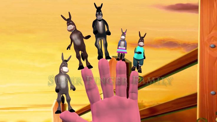 donkey | 3d nursery rhymes for children | finger family song for children
