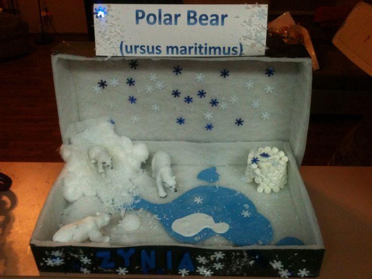 Polar Bear Habitat | Zy Polar Bear habitat