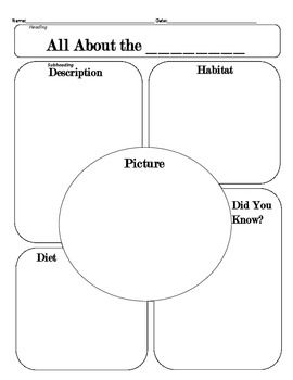 All About Any Animal Graphic Organizer | 1st grade Animal Unit | Pint ...