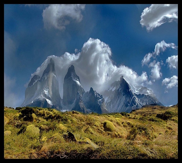 Let's make a dream... Torres del Paine - CHILE