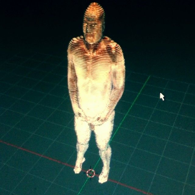 The Visible Human images reconstructed in 3D. Click to start the video on instagram