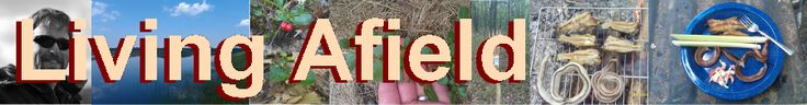 Living Afield - Great Lakes Michigan Edible Wild Plant Identification And Use