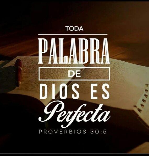 Proverbios 30,5
