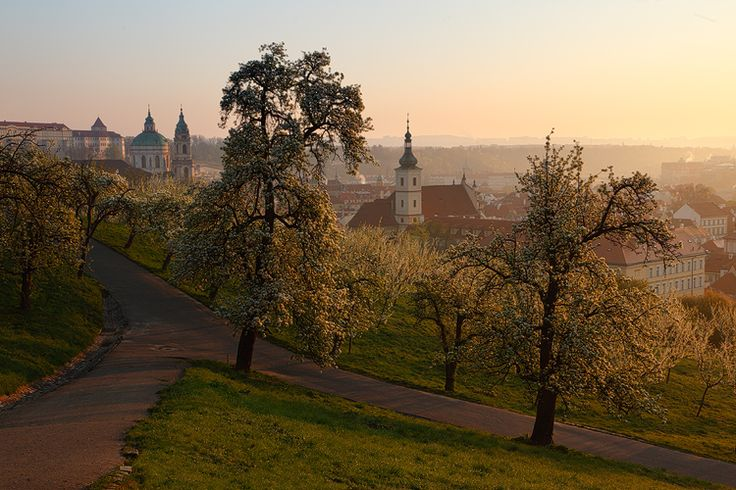 View from Petrin hill