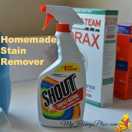 Homemade Stain Remover (Shout)