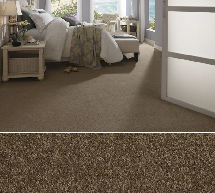Shaw Textured Carpet In Anso Nylon Style Glen Avon Color Brandy Snaps Things For The Home Pinterest Flooring And