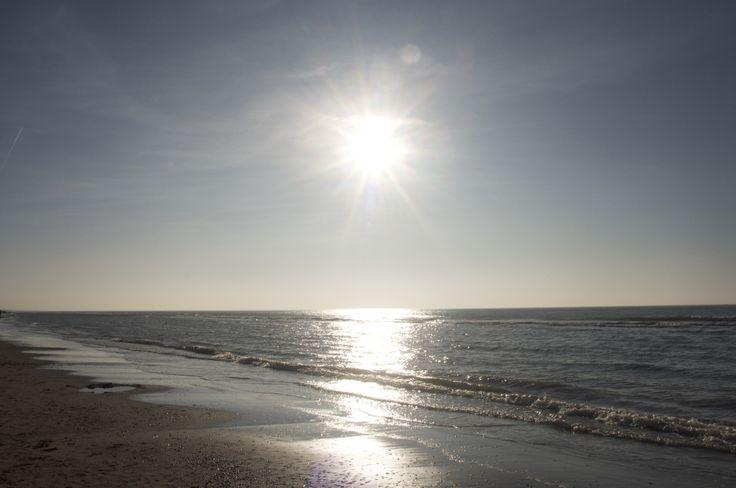 Netherlands~sea