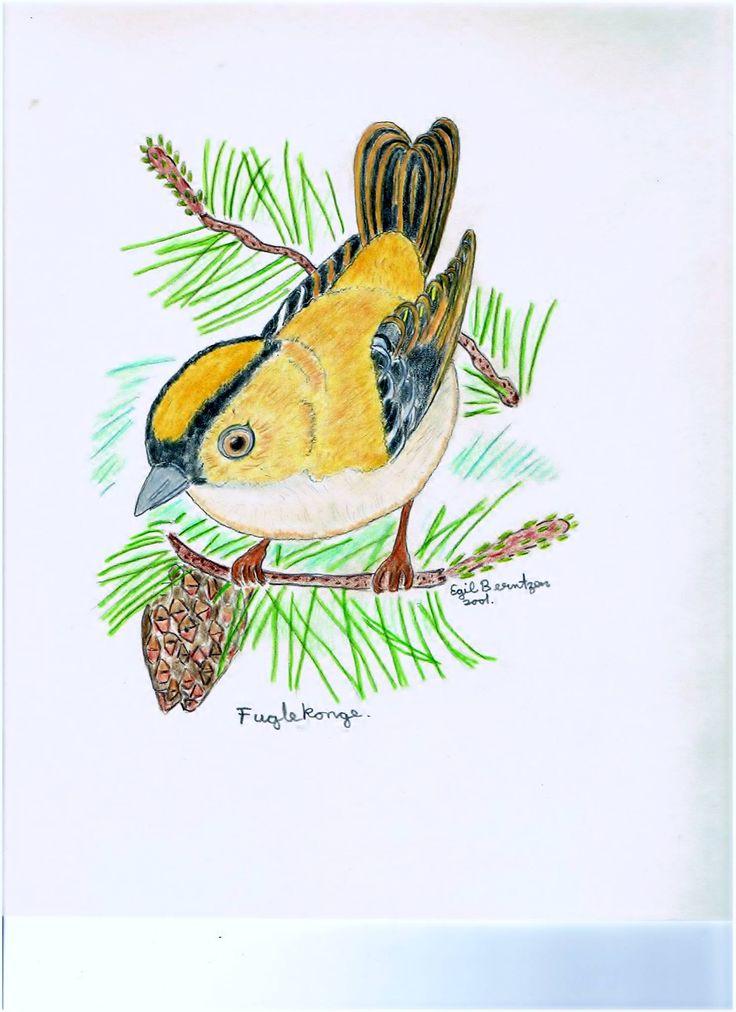 Birdlife!