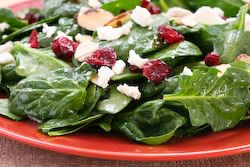 spinach salad w/ dried cranberries, almonds, and goat cheese.