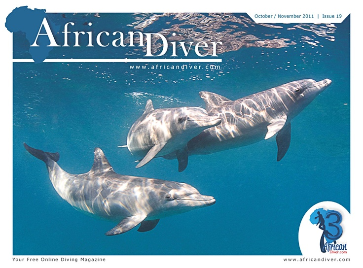Issue 19: Download for free. http://africandiver.com/index.php/magazine/download-issues
