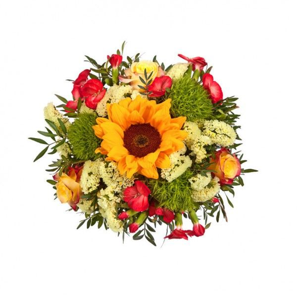 """Pflanzen-Kölle Blumenstrauß """"Sonnige Grüße"""": Ein sonniger Blütengruß - das perfekte Geschenk für jeden Anlass."""