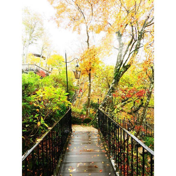 箱根の穴場紅葉スポット!「箱根ガラスの森美術館」の紅葉が美しい | RETRIP[リトリップ]