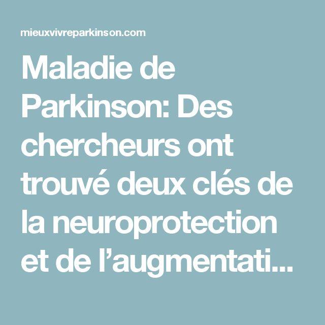 Maladie de Parkinson: Des chercheurs ont trouvé deux clés de la neuroprotection et de l'augmentation naturelle de la dopamine – Mieux Vivre Parkinson