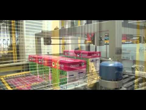 palletizer packing line/Palletizing machine