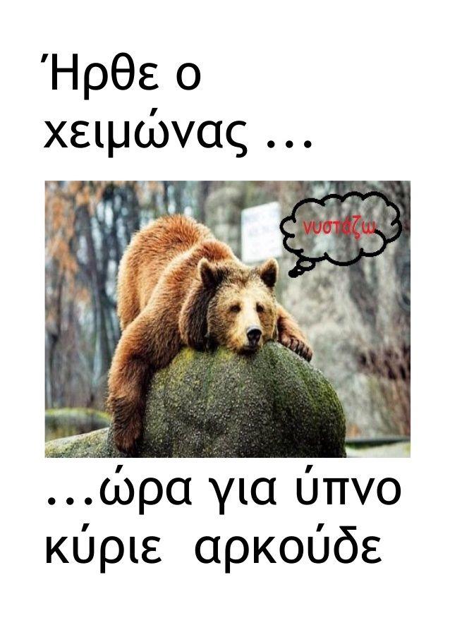 Ήρθε ο χειμώνας ... ...ώρα για ύπνο κύριε αρκούδε