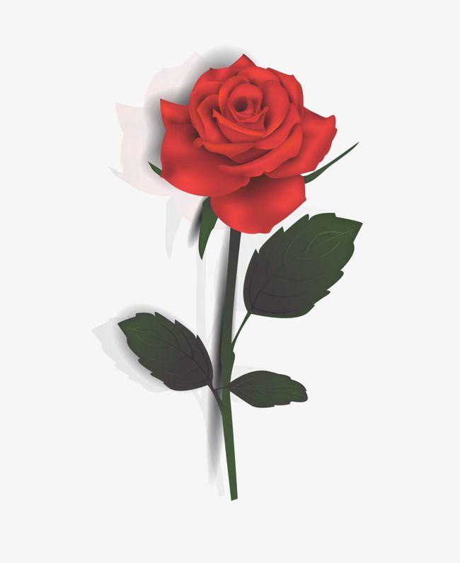 rose vector png transparent clipart image and psd file for free download flower background wallpaper vektorgrafik online erstellen ist svg eine vektordatei