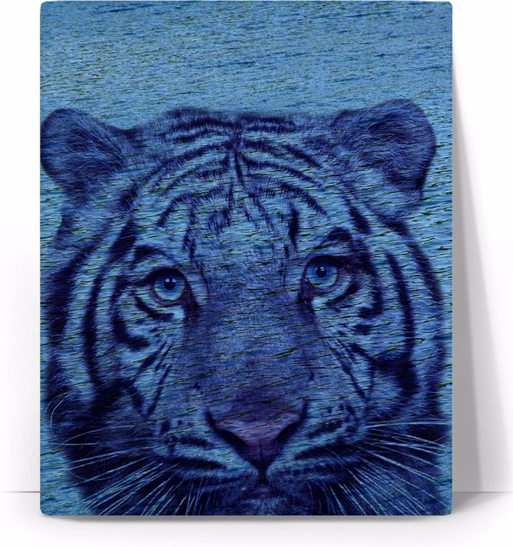 Check out my new product https://www.rageon.com/products/tiger-and-water-art-canvas-print?aff=BWeX on RageOn!