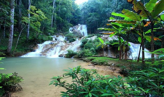 things to do, things to do in chiang mai, chiang mai, trekking, national park, Ob Luang
