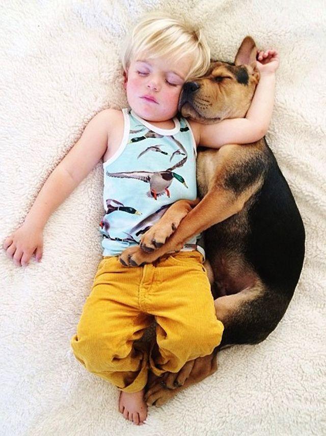 cachorro e criança dormindo em fotos incríveis - Boteco Design!