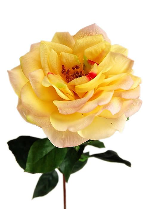 Flowers-by-Design.com - Real Touch MATURE Open Rose, $7.75 (http://www.flowers-by-design.com/real-touch-mature-open-rose/)