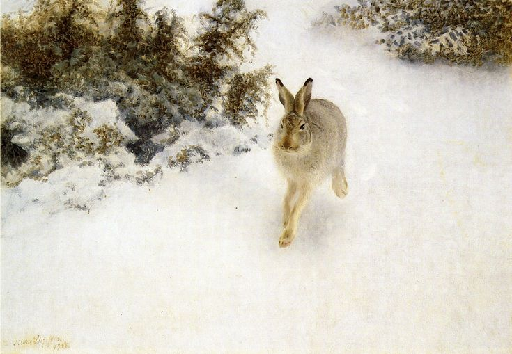 Bruno Liljefors - Winter Hare - Bruno Liljefors - Wikipedia, the free encyclopedia