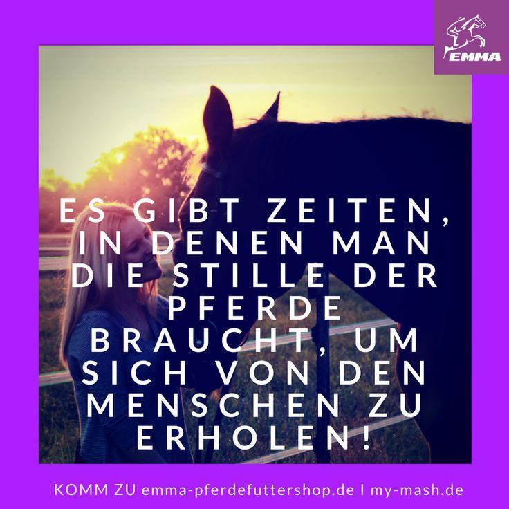 Besuche uns www.emma-pferdefu...