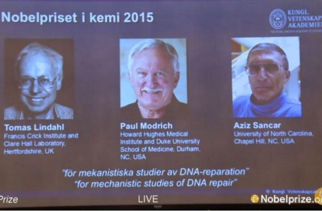 Entregan el Nobel de Química a tres científicos por sus estudios para reparar el ADN. Los premiados son el sueco Thomas Lindahl, el norteamericano Paul Modrich y el turco Aziz Sancar http://www.argnoticias.com/mundo/item/38486-nobel-de-qu%C3%ADmica-para-tres-cient%C3%ADficos-por-sus-estudios-para-reparar-el-adn