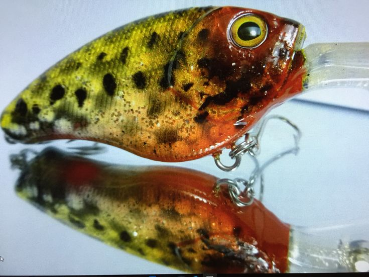 39 best images about airbrushed lures on pinterest shops for Fishing lure paint